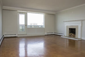 Gorgeous Penthouse Suite - Herkimer St. & Queen