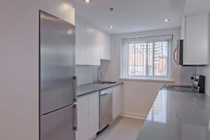 Concordia - McGill - Downtown - 1 Bedroom -Fully Renovated 3 1/2