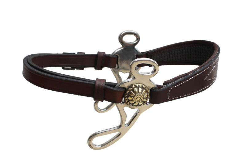 Horse English Western Bitless Padded Brown Leather Hackamore 35H63