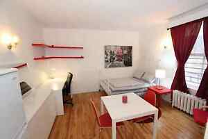 Bright, Cozy, Furnished Studios - Well-Priced, Move-in Ready!
