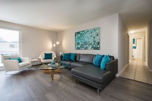 Fully Renovated Two Bedroom Apartment Near Wortley Village