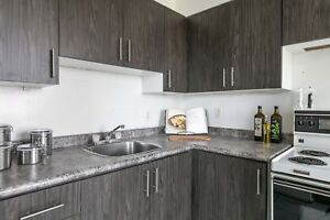 Newly Renovated One Bedroom with New Kitchens - Great Location!
