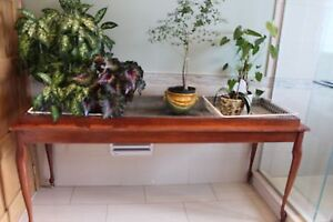 Wood Plant table