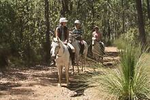 Holidays on Horseback Chidlow Mundaring Area Preview