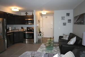 Furnished Downtown Studio Suite for Rent