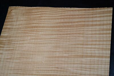 Curly Maple Raw Wood Veneer Sheets 12 X 14 Inches 142nd   F8628-38