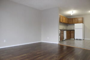 Renovated 1 & 2 Bedroom Apartment in City Park | 906 Duchess St