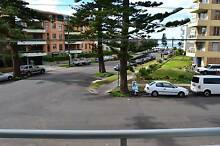 Manly apartments for a couple, friends share, FREE bills+internet Manly Manly Area Preview