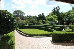 Lawn mowing ,Hedge Trimming, Gutter Cleaning an Gardening Service Epping Ryde Area Preview