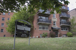 Newly Renovated 1 Bedroom  Close To All Amenities in Dundas