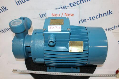 Calpeda 4 Kw T 100e T100e Pump Peripheral Gear Pump