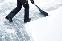 AFFORDABLE ROOF AND DRIVEWAY SNOW REMOVAL
