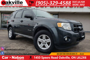 2009 Ford Escape WHOLESALE PRICE | AS IS | SPECIAL