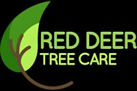 Specialty Tree pruning and Black Knot Removal!