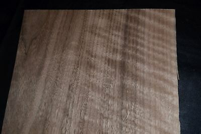 Walnut Raw Wood Veneer Sheets 9 X 42 Inches 142nd  E6925-17