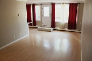 Two storey 2 bedroom condo apartment: West Edmonton