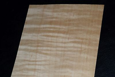 Curly Maple Raw Wood Veneer Sheets 4 X 46 Inches 142nd 8632-47