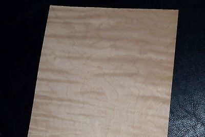 Curly Maple Raw Wood Veneer Sheets 6 X 22 Inches 142nd   8632-39
