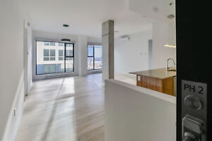 Penthouse Downtown  Old Port /Financial District + 1Month FREE