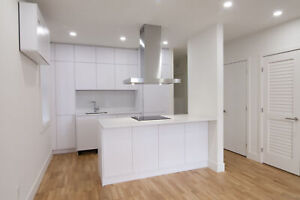 newly renovated 1 bedroom apartment near Guy-Concordia