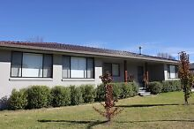 Beautifully renovated north hill home Armidale Armidale City Preview