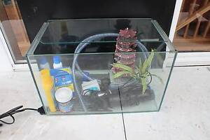Fish Tank and Accessories North Hobart Hobart City Preview