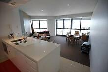 looking for one Guy, amazing river view apartment Meriton, CBD Brisbane City Brisbane North West Preview