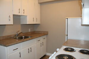 1 & 2 Bedroom Spacious Apartments in Greystone Heights
