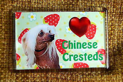 Chinese Crested Dog Gift Dog Fridge Magnet 77x51mm Birthday Gift