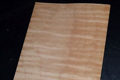 Curly Maple Raw Wood Veneer Sheets 6 X 29 Inches 142nd   8632-36