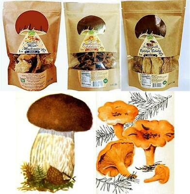 Dried Porcini, Chanterelles or Mixed Dry Mushrooms Gift of Carpathians 30gr(1oz) ()