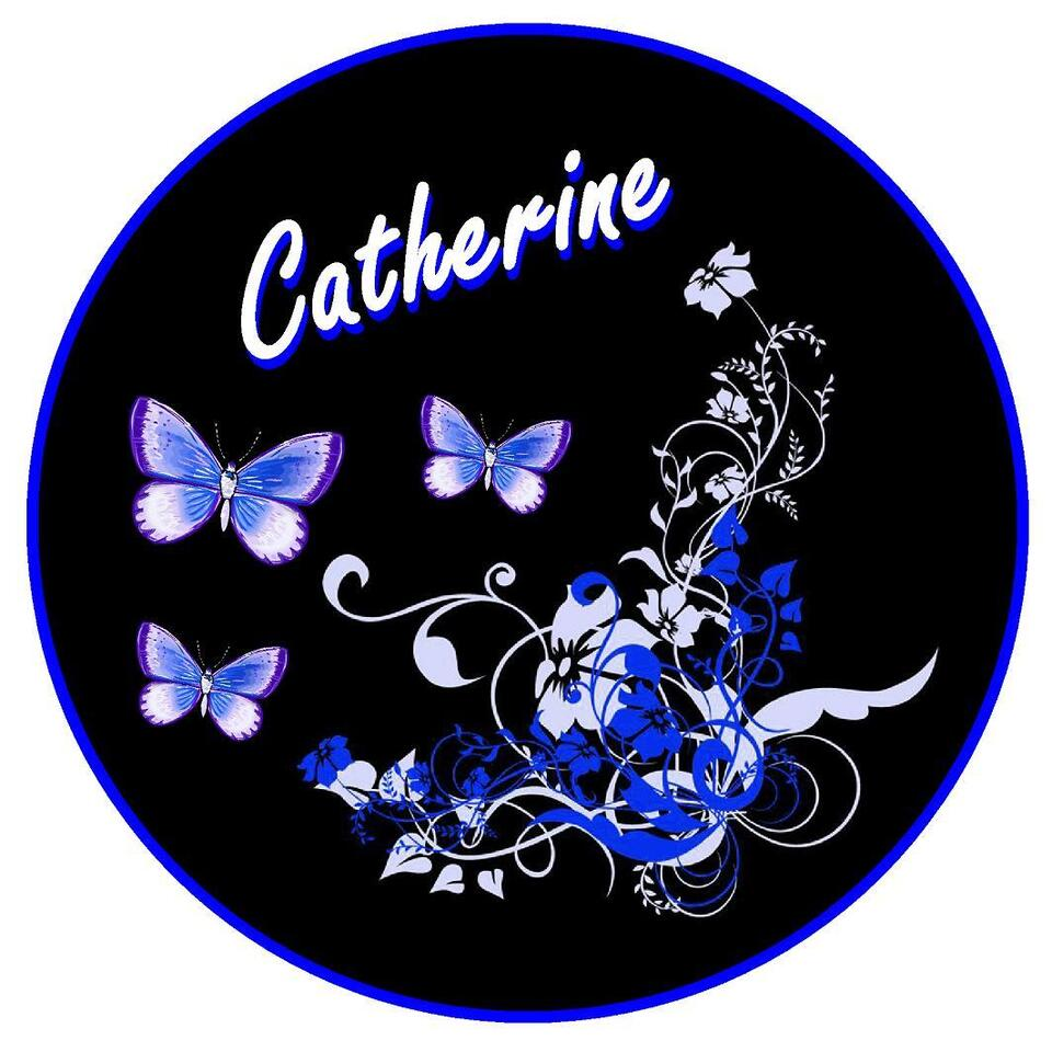 BLUE/BLACK BUTTERFLY & FLOWER PERSONALISED  CAR TAX DISC HOLDER - NAME REUSABLE
