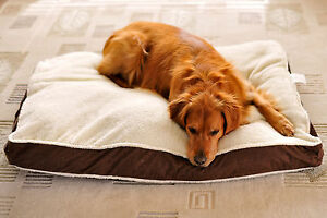 ZippyPaws-Large-Comfy-Dog-Bed-FREE-Shipping