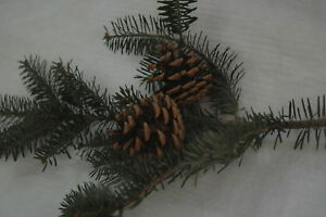 Christmas Tree Pine Cone Decorations