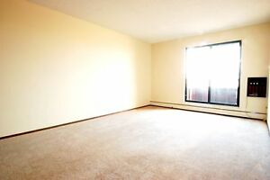 Studio Suite Available .... Call (306) 314-0155 NOW