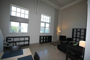 Beautiful Greenvale Lofts 1 Bed , 6 Appliances! AVAIL Oct.