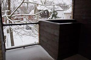 Wortley Village Huge 3 bedroom London Ontario image 10