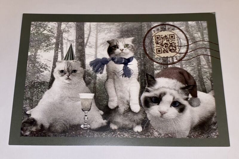 RARE Taylor Swift Holiday Card Postcard & Folklore Confetti NEW