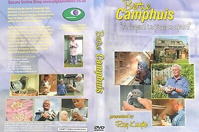 Bertie Camphuis  Widowhood  Racing Pigeons Dvd