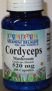 Cordyceps Sinensis Mushroom  520 mg 200 Capsules  Fresh!