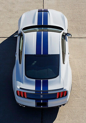 """6"""" Plain Rally stripes Stripe Graphics FIT 2015 2016 17 MUSTANG GT LX 5.0 Boost"""