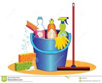 Cleaning Lady/House Cleaning
