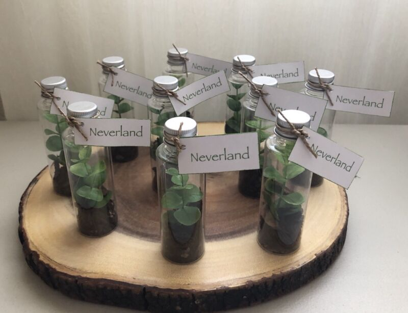 Peter Pan Neverland Birthday Party Favors Lot of 8