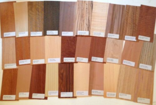30 pieces Wood Veneer Identification Labeled Pack named name variety domestic