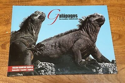 Travel, Galapagos, Photography, Nature, Birds, Animals, Spanish/English