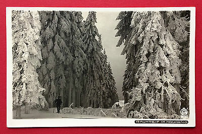 Walter Hahn Foto AK Nr. 6174 ERZGEBIRGE 1933 Rauhreif im Hochwald    ( 9328 online kaufen