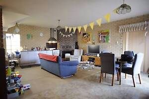 All bills included,pet friendly,new kitchenette,huge backyard Fremantle Area Preview