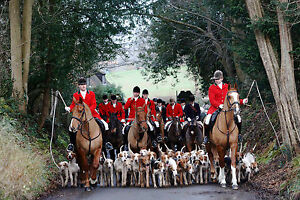 Framed Print - British Fox Hunting Troop (Picture Poster Beagles Dogs Hunt Art)