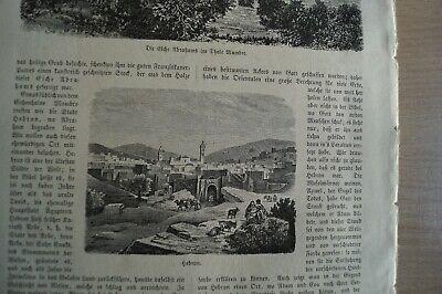 Totem Drucken (1882 Zeitungsdruck km / 6a / Tote Meer Abrahams EICHE Mambre Palästina Hebron)