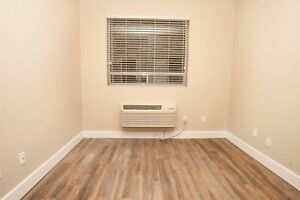 Downtown 2 bedroom apartment one room for rent